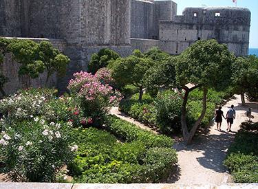 Castle of Dubrovnik